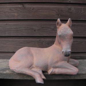 Paard lig Roestkleur
