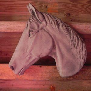 Paardenhoofd roestkleur