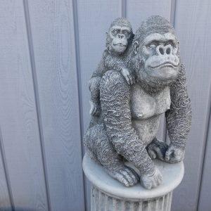 Gorilla met baby
