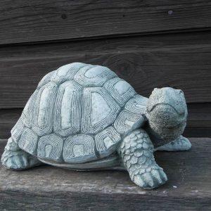 Schildpad 1