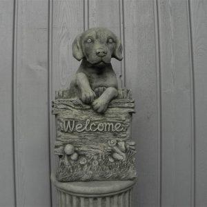 Welkom Hond