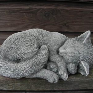 kat liggend klein 1