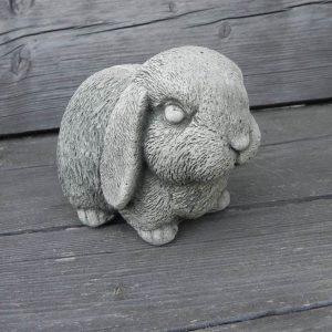 konijn klein
